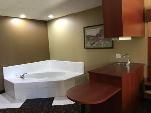 Suite Non Smoking- 1 Queen Bed with Jacuzzi