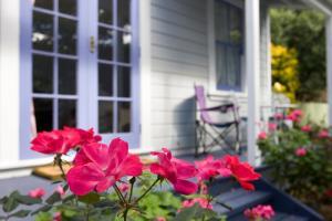Lavender Cottage, Nyaralók  Greytown - big - 8
