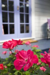Lavender Cottage, Ferienhäuser  Greytown - big - 3