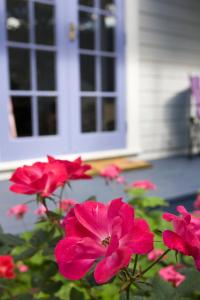 Lavender Cottage, Nyaralók  Greytown - big - 3