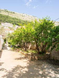 Guest House Mery, Apartments  Dubrovnik - big - 15