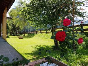 Housemuhlbach Wellness Aquaspa, Residence  Sappada - big - 129