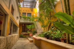 Hotel Luz en Yucatan, Hotel  Mérida - big - 93