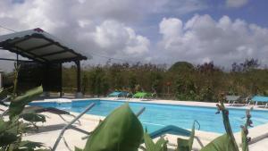 Locations Plus, Hotels  Port-Louis - big - 23