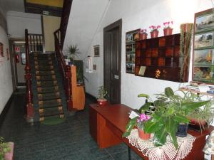 Hostal Residencia Blest Gana, Penziony – hostince  Viña del Mar - big - 6