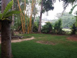 Pathum Family Home, Penzióny  Hikkaduwa - big - 21