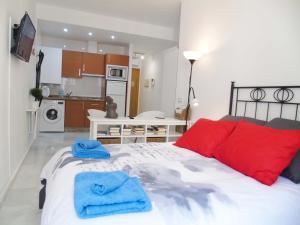 A&N Loft Picasso, Apartments  Málaga - big - 4