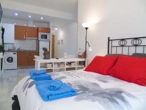 A&N Loft Picasso, Apartments  Málaga - big - 10