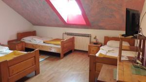 Hostel Majsic