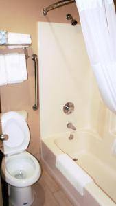 Quality Inn & Suites Near White Sands National Monument, Отели  Аламогордо - big - 6