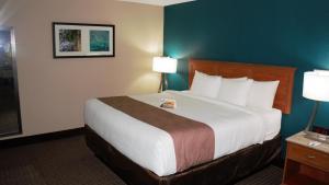 Quality Inn & Suites Near White Sands National Monument, Отели  Аламогордо - big - 8