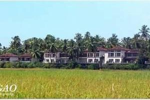 Goan Portuguese Villa, Vily  Saligao - big - 6