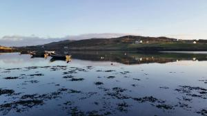 Ocean Villa Country Home, Bed and Breakfasts  Clifden - big - 38