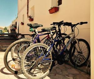 Hostel Secar De la Real, Hostels  Palma de Mallorca - big - 21