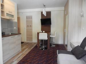 Apartments Zed Vila Zvoncica, Appartamenti  Kopaonik - big - 15