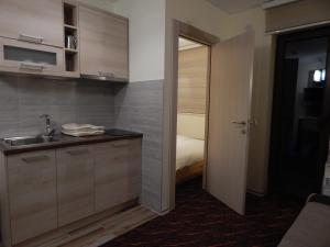 Apartments Zed Vila Zvoncica, Appartamenti  Kopaonik - big - 9