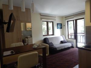 Apartments Zed Vila Zvoncica, Appartamenti  Kopaonik - big - 4