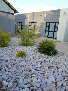Tsumeb Guesthouse Kamho, Гостевые дома  Tsumeb - big - 65