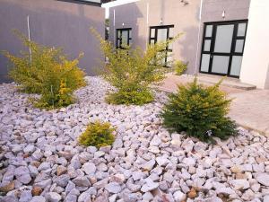Tsumeb Guesthouse Kamho, Гостевые дома  Tsumeb - big - 60