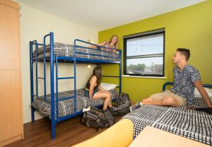 Bed in 3-Bed Male Dormitory Room with Shared Bathroom