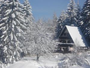 Regina Cottage