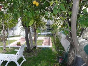 Garden House, Bed and breakfasts  Ercolano - big - 28