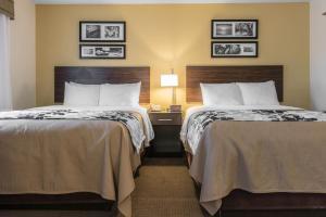 带两张大号床和沙发床的大号床套房