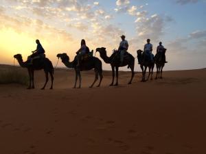 Camel Bivouac Merzouga, Campeggi di lusso  Merzouga - big - 40