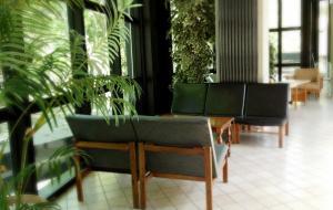 Hotel Numi & Medusa, Hotely  Cesenatico - big - 36