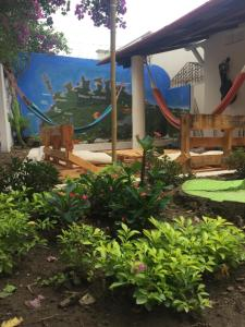 Morros Hostel, Hostely  Santa Marta - big - 5
