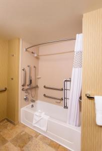 King Room - Disability Access with Bathtub and Water View