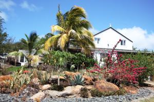 Residence Foulsafat, Kunyhók  Port Mathurin - big - 79