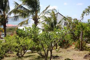 Residence Foulsafat, Kunyhók  Port Mathurin - big - 29