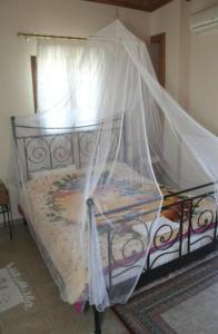 Guesthouse Xenioti, Гостевые дома  Цагарада - big - 28