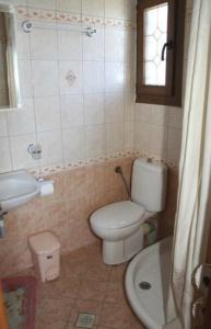 Guesthouse Xenioti, Гостевые дома  Цагарада - big - 24