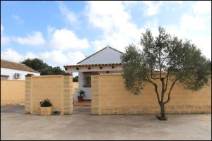 Bungalow complejo III, Holiday homes  Conil de la Frontera - big - 3
