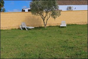 Bungalow complejo III, Holiday homes  Conil de la Frontera - big - 6