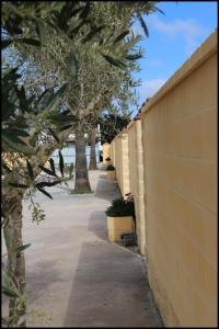 Bungalow complejo III, Holiday homes  Conil de la Frontera - big - 11