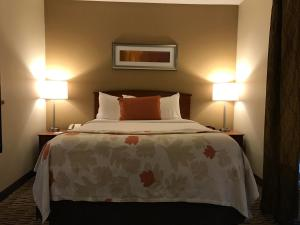 Hawthorn Suites by Wyndham Louisville North, Hotels  Jeffersonville - big - 25