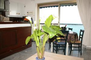 Le Semiramis 2, Apartments  Cagnes-sur-Mer - big - 14