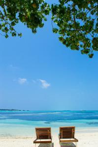 Luxury Beach Maldives, Vendégházak  Guraidhoo - big - 17
