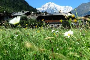 Le Petit Coeur Residence De Montagne