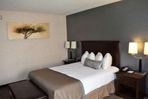 Queen Room with Two Queen Beds - Disability Accesss