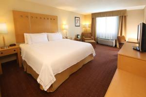 Holiday Inn Express Hotel & Suites CD. Juarez - Las Misiones, Hotely  Ciudad Juárez - big - 11