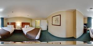 Queen Suite with Two Queen Beds and  Sofa Bed - Non-Smoking