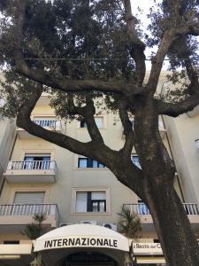 Residence Internazionale - AbcAlberghi.com