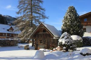 Haus Alexander, Guest houses  Schladming - big - 76