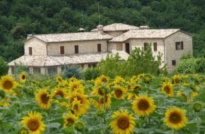 Casale Fabrizi Agriturismo