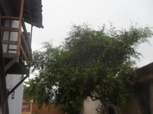 Adubai Hostel, Hostely  Alto Paraíso de Goiás - big - 25
