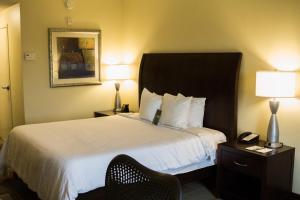 Hilton Garden Inn Clarksville, Отели  Кларксвилл - big - 15